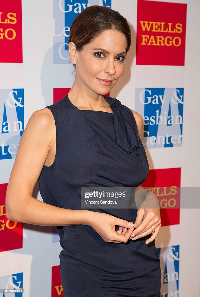Actress Lisa Locicero attends the L.A. Gay & Lesbian Center's 42nd anniversary Vanguard Awards Gala - Arrivals at Westin Bonaventure Hotel on November 9, 2013 in Los Angeles, California.