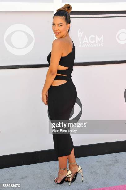 Actress Liz Hernandez arrives at the 52nd Academy Of Country Music Awards on April 2 2017 in Las Vegas Nevada