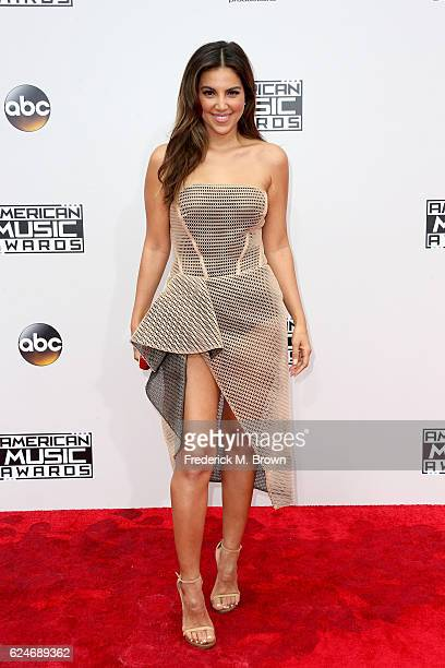 Actress Liz Hernandez attends the 2016 American Music Awards at Microsoft Theater on November 20 2016 in Los Angeles California