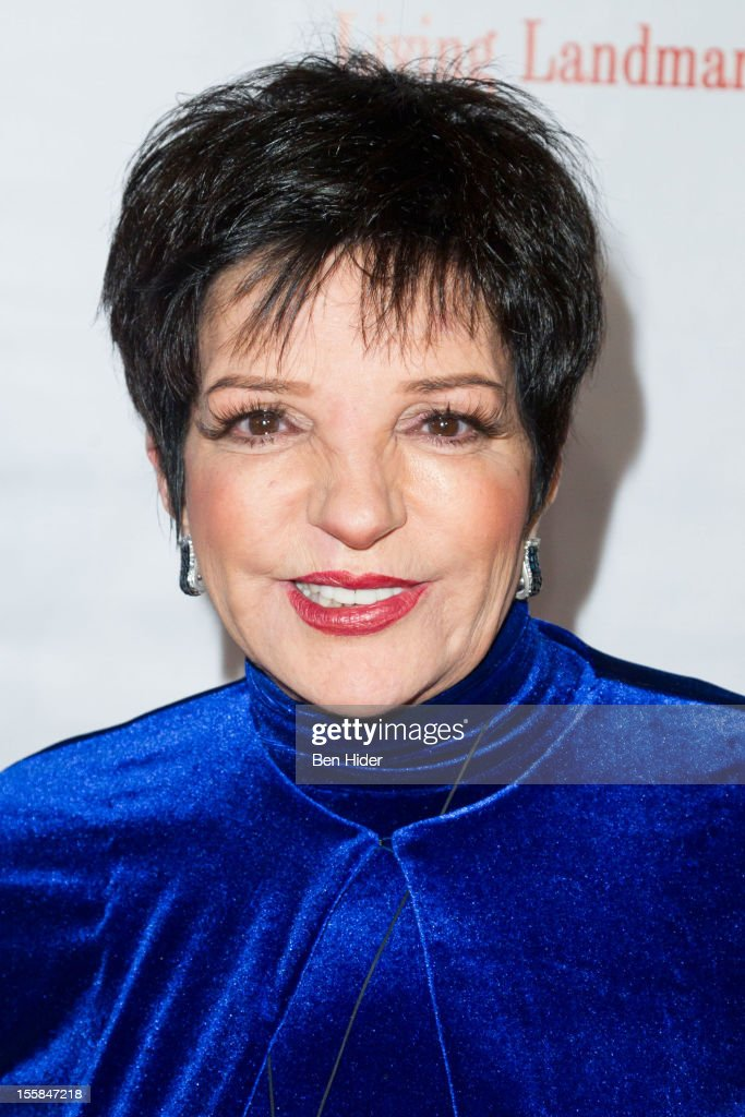 Actress Liza Minnelli attends the 2012 Living Landmarks Celebration at The Plaza on November 8 2012 in New York City