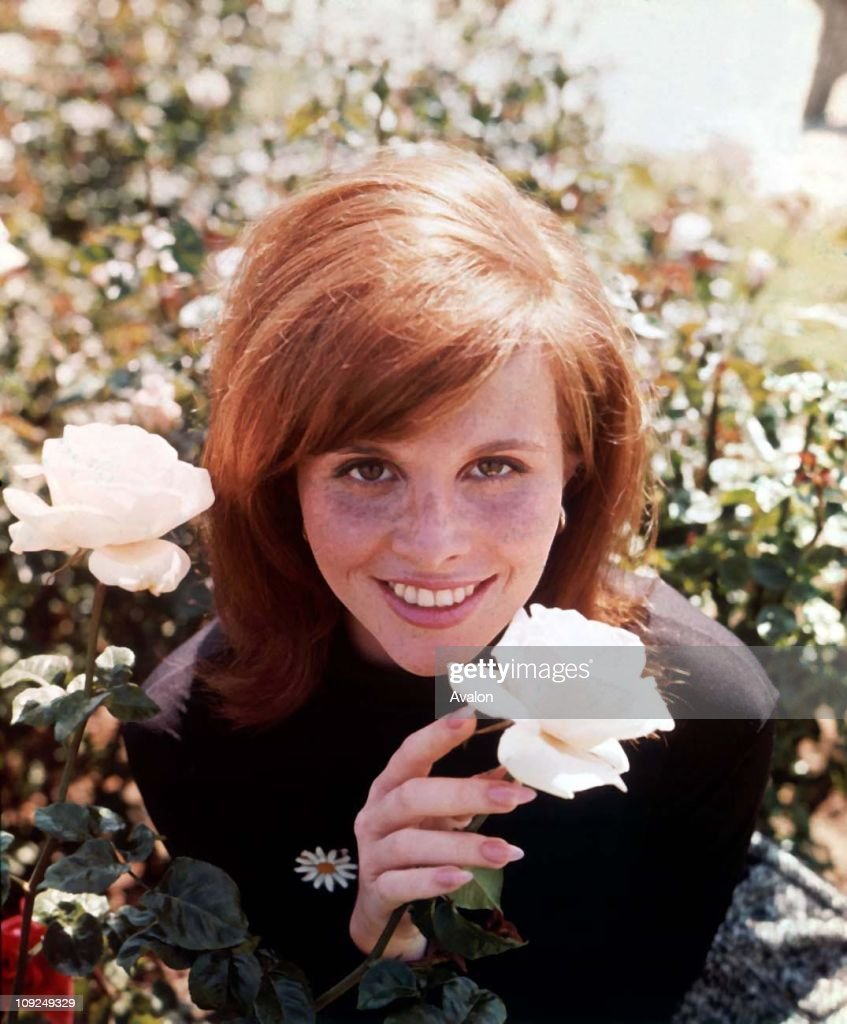 Gloria Loring Actress 6132431 Timeincown Stock Photos and Pictures ...