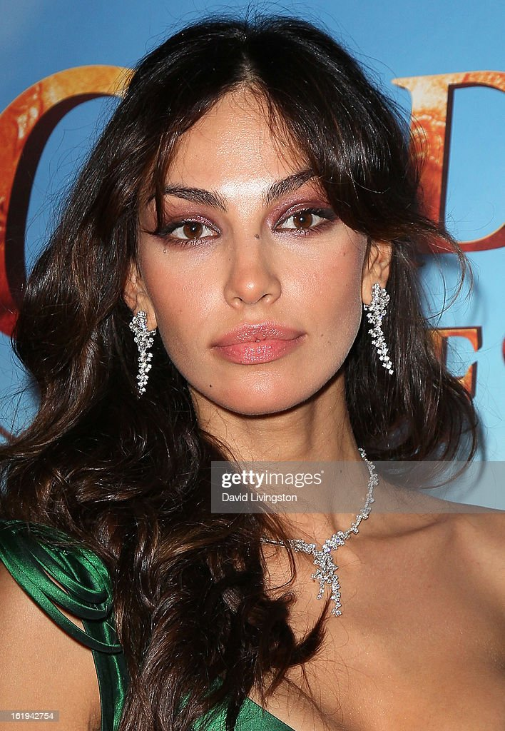 Actress Madalina Ghenea attends the 8th Annual Los Angeles Italia Film, Fashion and Art Festival Opening Night Gala at the Mann Chinese 6 on February 17, 2013 in Los Angeles, California.