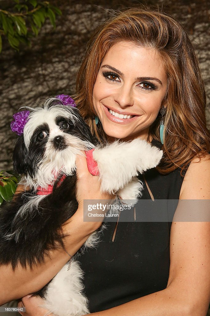 Actress Maria Menounos poses with a dog wearing Lyric Culture for PetSmart at Much Love Animal Rescue's makeovers for mutts at Peninsula Hotel on March 14, 2013 in Beverly Hills, California.