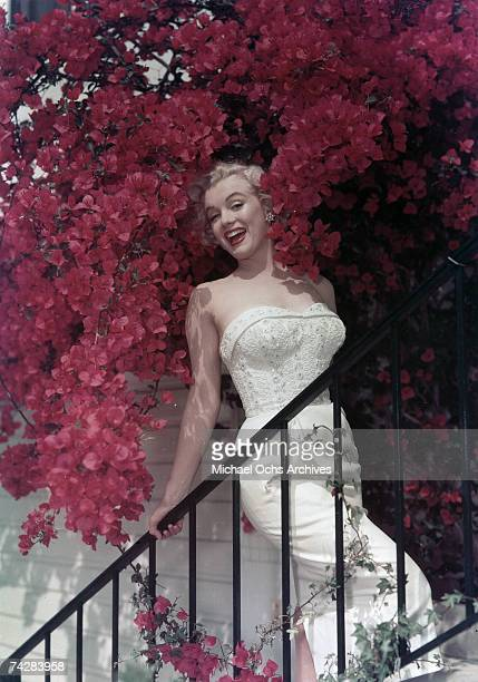 Actress Marilyn Monroe poses for a portrait on a stair case among blooming pink flowers in circa 1950