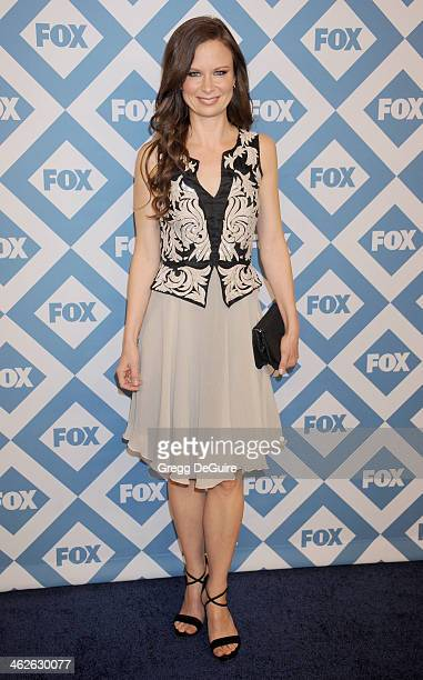 Actress Mary Lynn Rajskub arrives at the 2014 TCA winter press tour FOX allstar party at The Langham Huntington Hotel and Spa on January 13 2014 in...