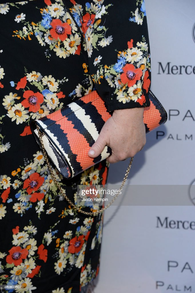 Actress Melissa McCarthy (clutch detail) attends Variety's Creative Impact Awards and 10 Directors to Watch brunch presented by Mercedes-Benz at The 25th Annual Palm Springs International Film Festival at Parker Palm Springs on January 5, 2014 in Palm Springs, California.