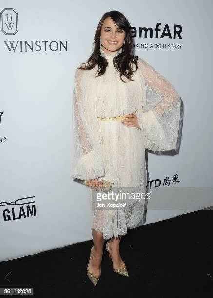Actress Mia Maestro arrives at amfAR Los Angeles 2017 at Ron Burkleâs Green Acres Estate on October 13 2017 in Beverly Hills Californi