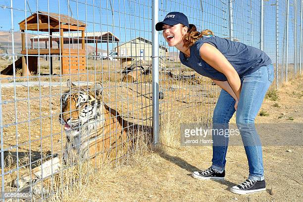 Actress Minka Kelly visits Safe Haven Wildlife Sanctuary in Imlay Nevada with IFAW to raise awareness about the thousands of lions tigers and other...