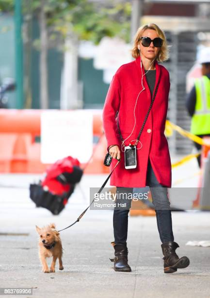 Actress Naomi Watts is seen walking her Dog in Soho on October 20 2017 in New York City