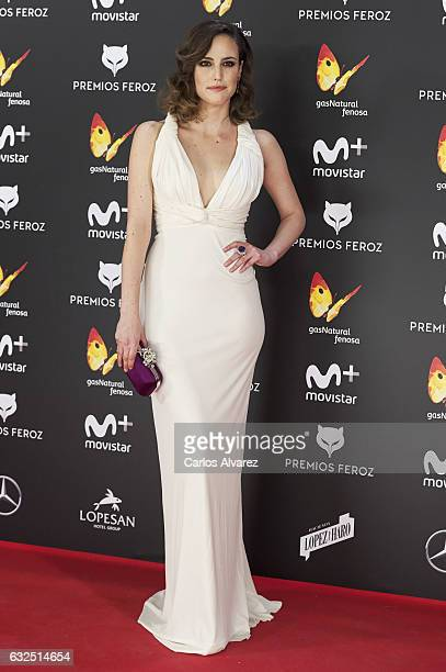 Actress Natalia de Molina attends the Feroz cinema awards 2016 at the Duques de Pastrana Palace on January 23 2017 in Madrid Spain