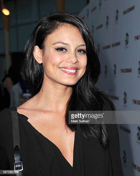 Actress Nathalie Kelley attends the premiere of Millennium Entertainment's 'The Iceman' at ArcLight Hollywood on April 22 2013 in Hollywood California