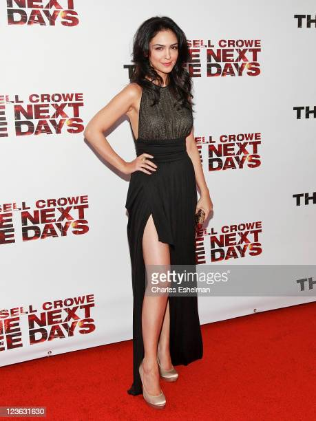 Actress Nazanin Boniadi attends the premiere of 'The Next Three Days' at the Ziegfeld Theatre on November 9 2010 in New York City