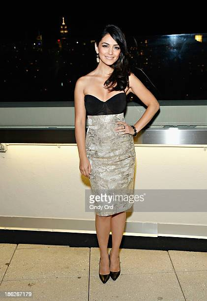 Actress Nazanin Boniadi attends the Secrets of Homeland a panel discussion of the SHOWTIME hit series 'Homeland' at the Sheraton TriBeCa Club Lounge...