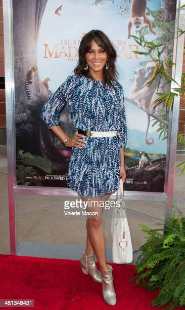 Actress Nicole Ari Parker Kodjoe attends the Premiere Of Warner Bros Pictures And IMAX Entertainment's 'Island Of Lemurs Madagascar' at California...