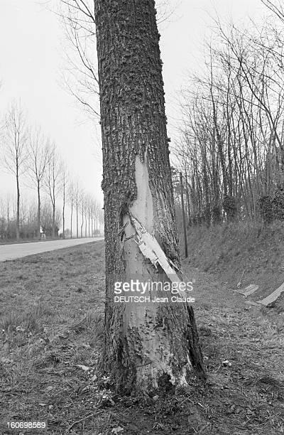 Actress Nicole Berger Victim Of A Car Crash Normandie Folleville 9 Avril 1967 Reportage sur les lieux de l'accident le tronc déchiré de l'arbre...