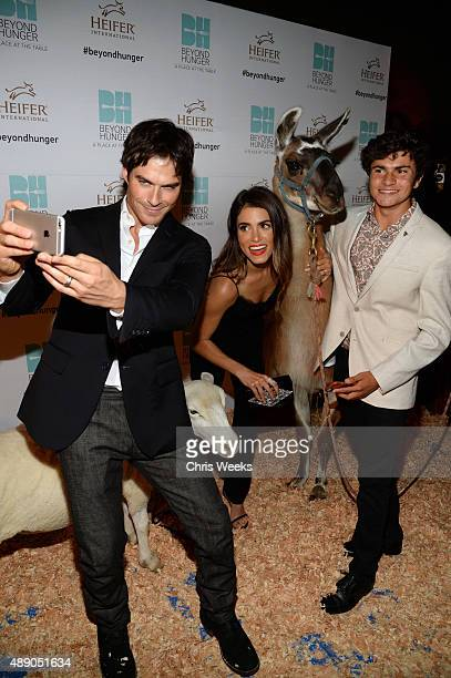 Actress Nikki Reed actor Ian Somerhalder and guest attend Heifer International's 4th Annual Beyond Hunger Gala at the Montage on September 18 2015 in...