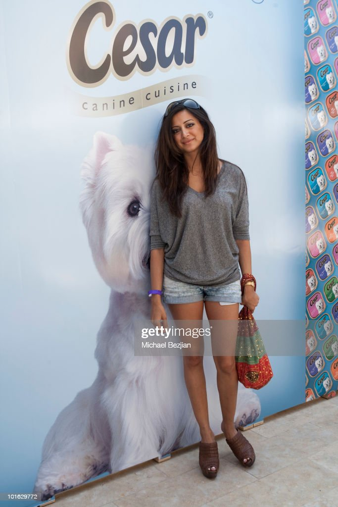 Cesar Canine Cuisine at Kari Feinstein MTV Movie Awards Style Lounge-Day 2