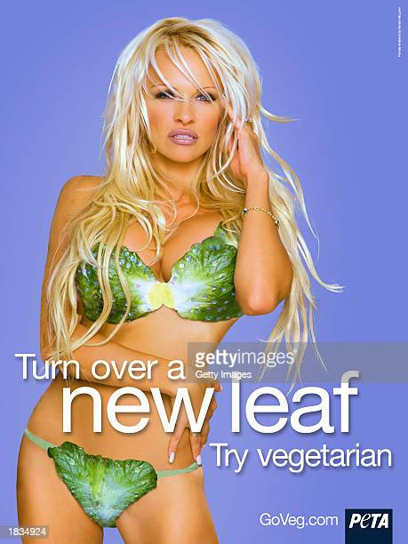 Actress Pamela Anderson poses in a new poster for animal rights group PETA in this undated handout photo Anderson's poster has been made into a...
