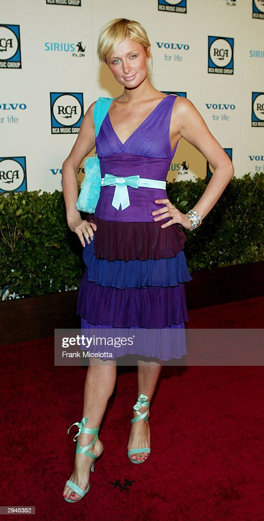 Actress <a gi-track='captionPersonalityLinkClicked' href=/galleries/search?phrase=Paris+Hilton&family=editorial&specificpeople=171761 ng-click='$event.stopPropagation()'>Paris Hilton</a> attends Clive Davis' legendary Pre-Grammy party at the Beverly Hills Hotel on February 7, 2004 in Beverly Hills, California.