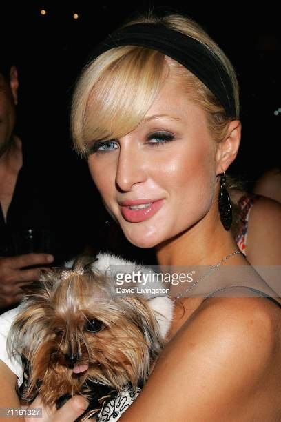 Actress Paris Hilton attends the unveiling of the new exhibit 'Idols of Gay Hollywood' at The Hollywood Museum on June 8 2006 in Hollywood California