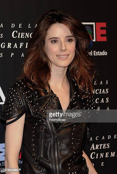 Actress Pilar Lopez de Ayala attends the Goya Awards Nominated Gala 2012 at the Real Casa de Correos on January 28 2012 in Madrid Spain