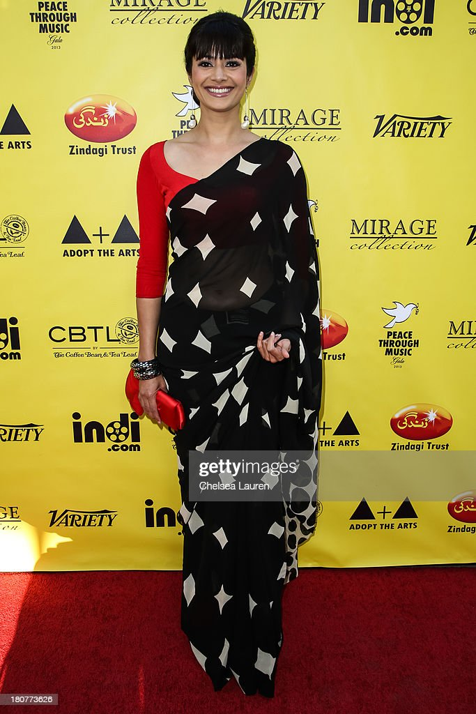 Actress Pooja Batra arrives at Adopt the Arts' Peace Through Music celebrity gala at Loews Hollywood Hotel on September 15, 2013 in Hollywood, California.