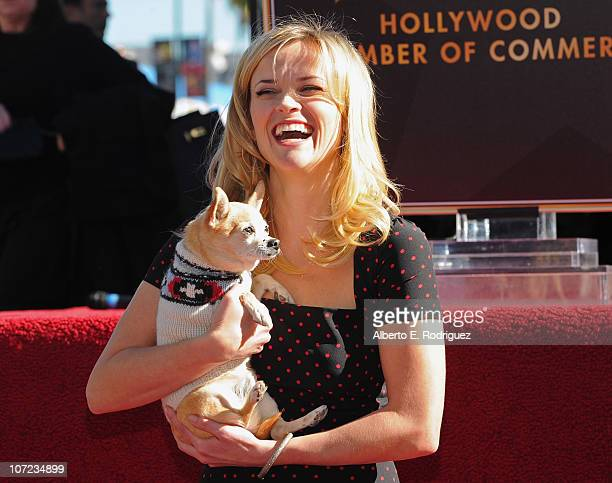 Actress Reese Witherspoon attends the ceremony honoring her with the 2425th Star on The Hollywood Walk of Fame on December 1 2010 in Hollywood...
