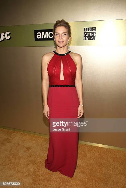Actress Rhea Seehorn attends AMC Networks Emmy Party at BOA Steakhouse on September 18 2016 in West Hollywood California