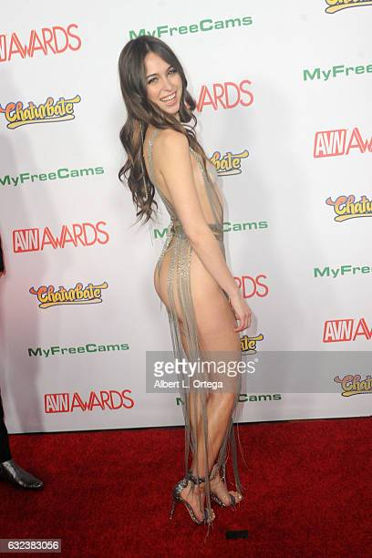 Actress Riley Reid arrives at the 2017 Adult Video News Awards held at the Hard Rock Hotel Casino on January 21 2017 in Las Vegas Nevada