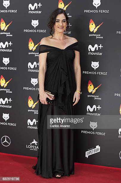 Actress Rocio Munoz attends the Feroz cinema awards 2016 at the Duques de Pastrana Palace on January 23 2017 in Madrid Spain