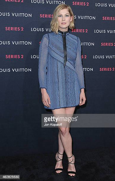 Actress Rosamund Pike arrives at Louis Vuitton 'Series 2' The Exhibition on February 5 2015 in Hollywood California
