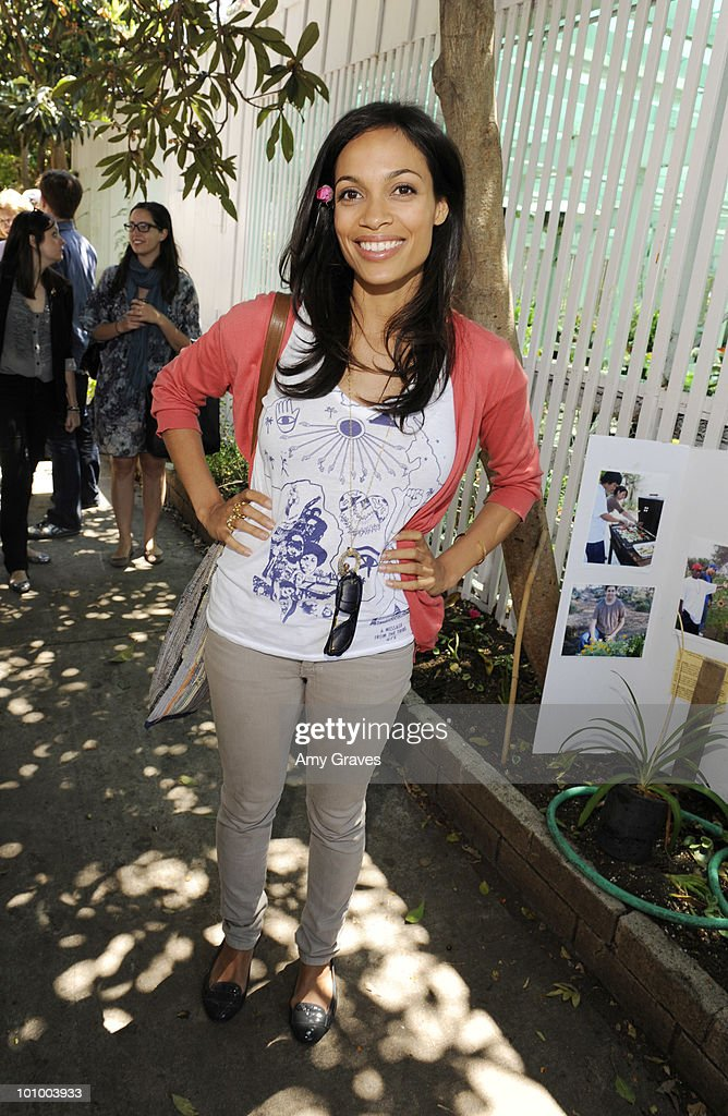 Actress Rosario Dawson attends the Environmental Media Association and Yes to Carrots Garden Luncheon at The Learning Garden at Venice High School on May 26, 2010 in Venice, California.