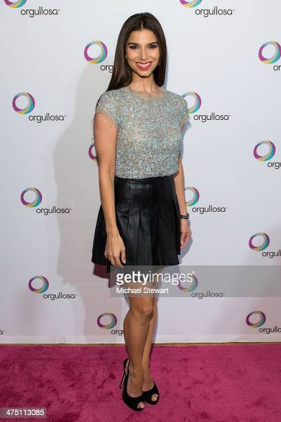 Actress Roselyn Sanchez attends the Nueva Latina campaign launch at Helen Mills Event Space on February 26 2014 in New York City