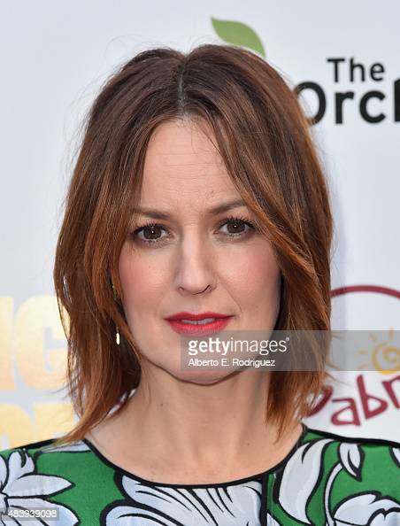 Actress Rosemarie DeWitt attends the premiere of 'Digging for Fire' at The ArcLight Cinemas on August 13 2015 in Hollywood California