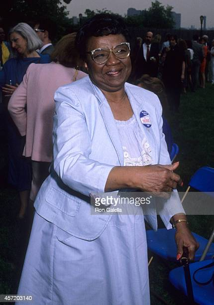 Rosetta Lenoire Stock Photos and Pictures | Getty Images Rosetta Lenoire Award