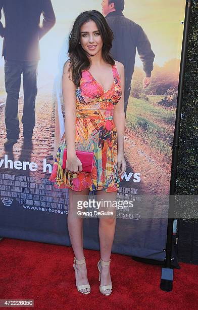 Actress Ryan Newman arrives at the Los Angeles premiere of 'Where Hope Grows' at ArcLight Cinemas on May 4 2015 in Hollywood California