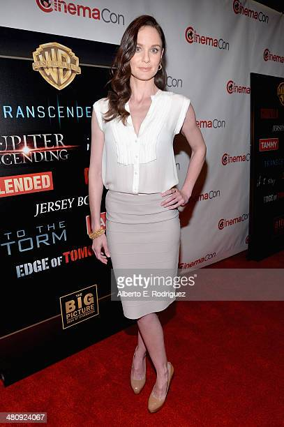 "Actress Sarah Wayne Callies attends Warner Bros Pictures' ""The Big Picture"" an Exclusive Presentation Highlighting the Summer of 2014 and Beyond..."
