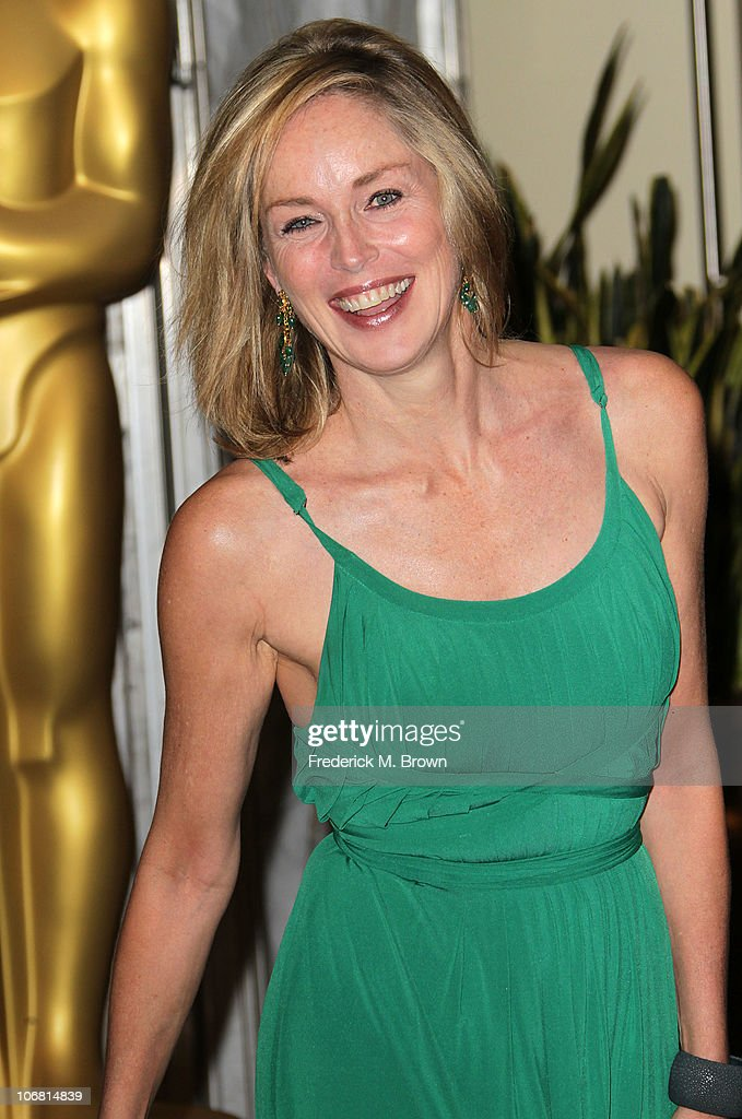 Actress Sharon Stone attends the Academy of Motion Picture Arts and Sciences' second annual Governors Awards at the Grand Ballroom, Hollywood and Highland on November 13, 2010 in Los Angeles, California.