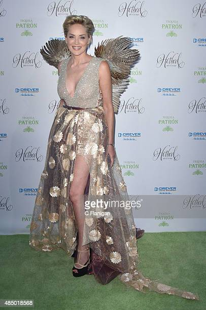 Actress Sharon Stone attends the Fourth Annual Hotbed Gala at The Drever Estate on August 22 2015 in Tiburon California