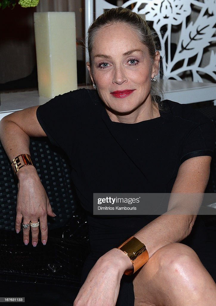Actress Sharon Stone attends The New Yorker's David Remnick Hosts White House Correspondents' Dinner Weekend Pre-Party at W Hotel Rooftop on April 26, 2013 in Washington, DC.