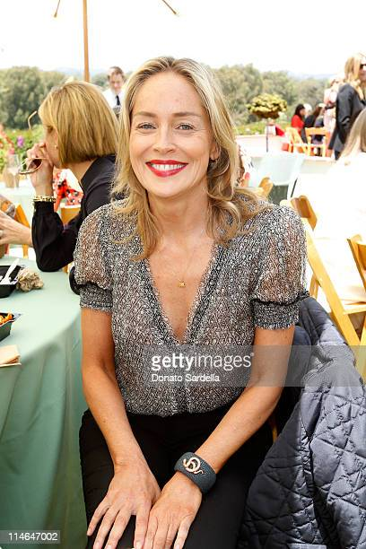 Actress Sharon Stone attends the PS ARTS Bag Lunch Sponsored By Dior Beauty held at a Private Residence on May 24 2011 in Santa Monica California