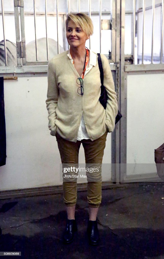 Actress Sharon Stone is seen on February 6 2016 Los Angeles CA