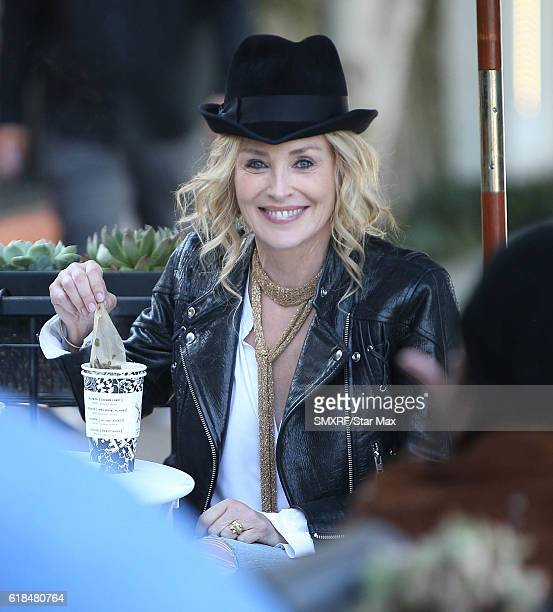Actress Sharon Stone is seen on October 26 2016 in Los Angeles California