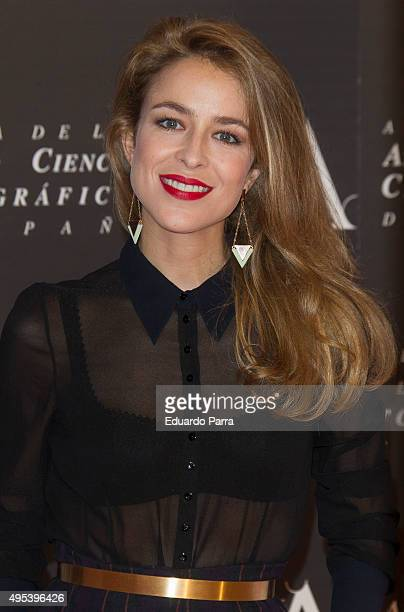 Actress Silvia Abascal attends the Golden Medal 2015 ceremony at Academia de Cine on November 2 2015 in Madrid Spain