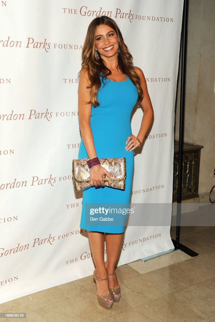 Actress <a gi-track='captionPersonalityLinkClicked' href=/galleries/search?phrase=Sofia+Vergara&family=editorial&specificpeople=214702 ng-click='$event.stopPropagation()'>Sofia Vergara</a> attends 2013 Gordon Parks Foundation Awards at The Plaza Hotel on June 4, 2013 in New York City.