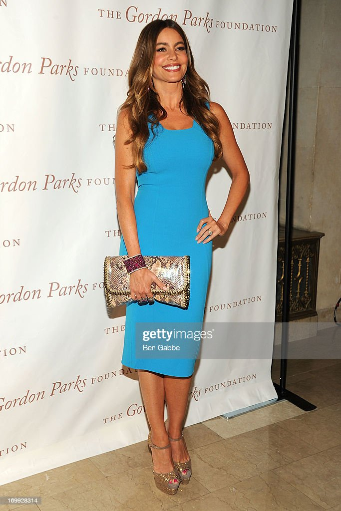 Actress Sofia Vergara attends 2013 Gordon Parks Foundation Awards at The Plaza Hotel on June 4, 2013 in New York City.