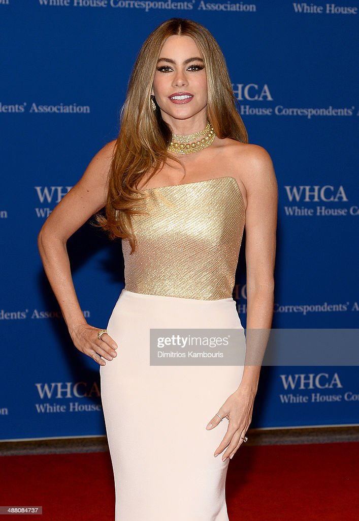 Actress Sofia Vergara attends the 100th Annual White House Correspondents' Association Dinner at the Washington Hilton on May 3, 2014 in Washington, DC.