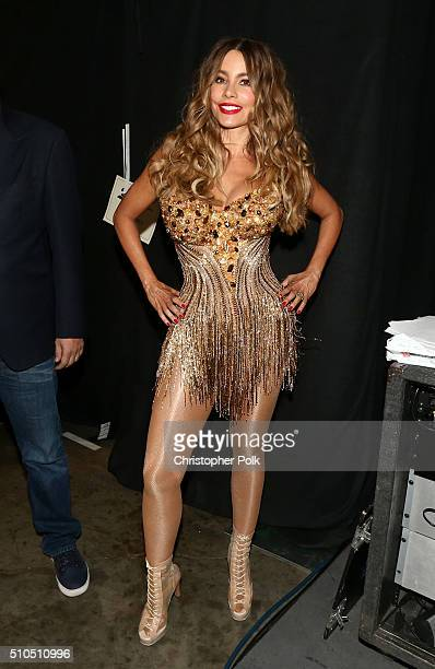 Actress Sofia Vergara attends The 58th GRAMMY Awards at Staples Center on February 15 2016 in Los Angeles California