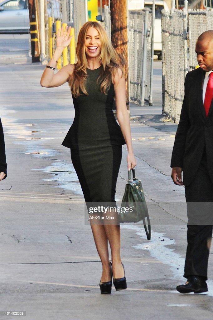 Actress Sofia Vergara is seen on January 8, 2014 in Los Angeles, California.