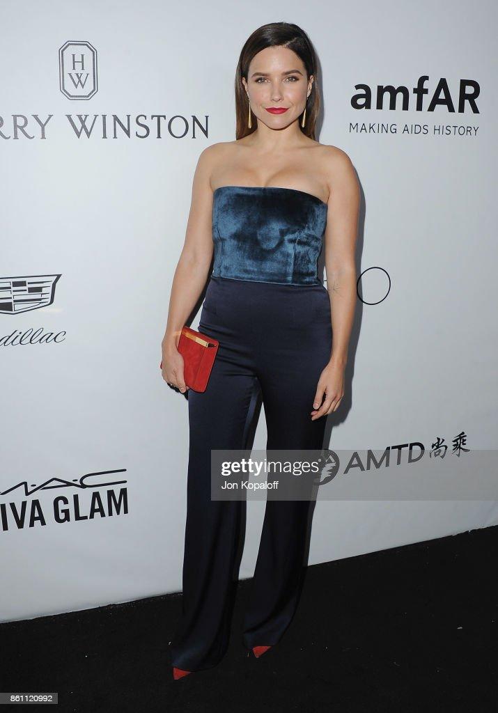Actress Sophia Bush arrives at amfAR Los Angeles 2017 at Ron Burkleâs Green Acres Estate on October 13, 2017 in Beverly Hills, Californi